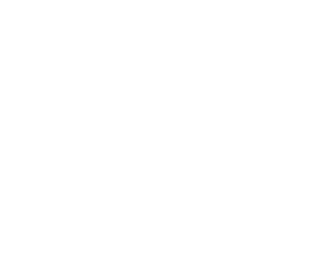 Waves Surf School Cornwall - Logo