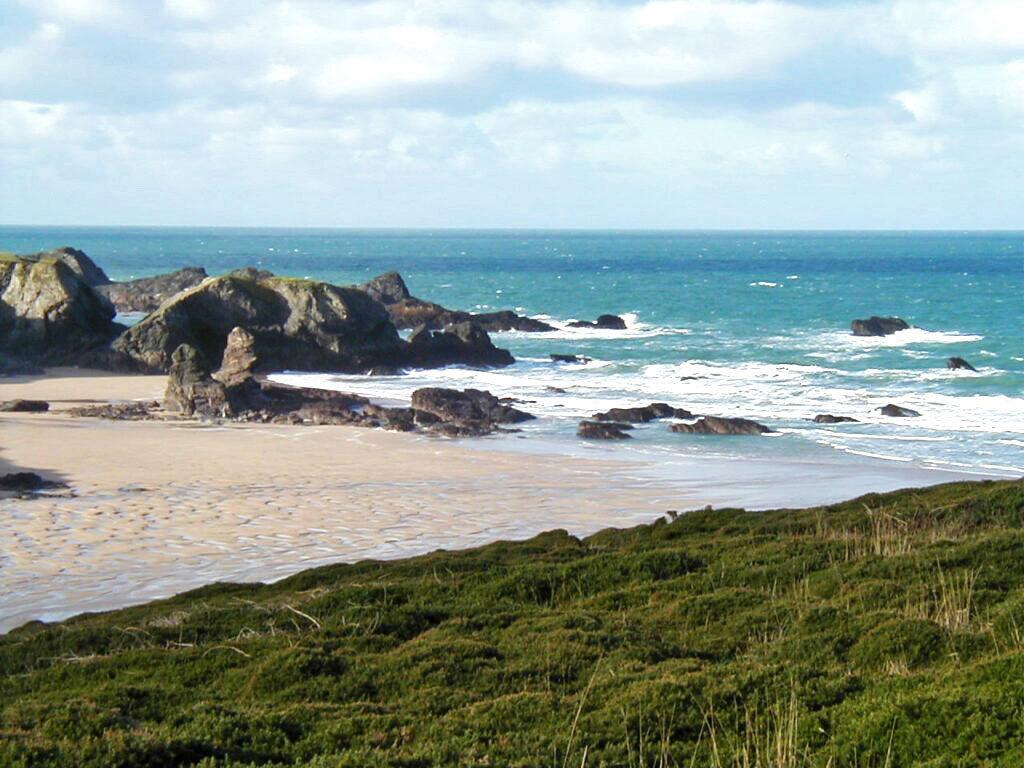 Waves Surf School, Cornwall - Surf Lessons Porthcothan